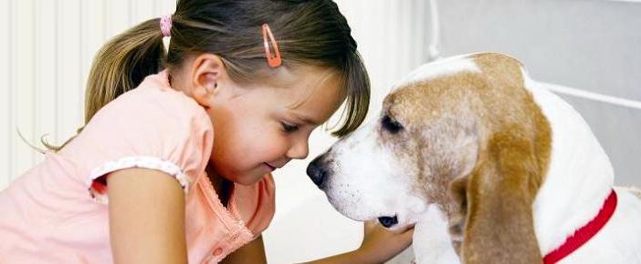 Novartis Animal Health Esb3: Elanco Cierra El Acuerdo Para Comprar Novartis Animal