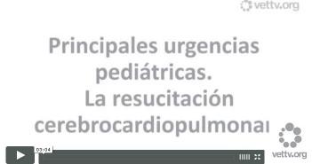 Principales urgencias pediátricas. La resucitacion cerebrocardiopulmonar