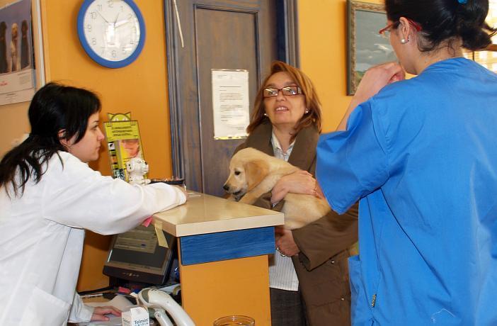 La recepción, un puesto clave en la clínica veterinaria - Ateuves ...