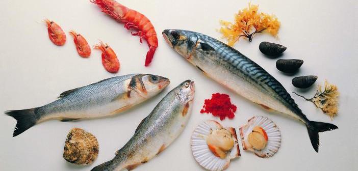 ¿Qué son los ácidos grasos omega 3 y cuál es su función en mascotas?