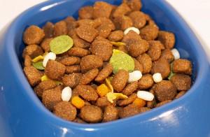Vitaminas y minerales en piensos de perros y gatos