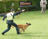 Cotecnica Maxima renueva como suministrador oficial de la Guardia Civil