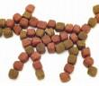 Tipos de alimentos para perros y gatos