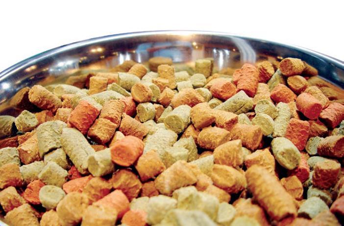 Adecuaci n nutricional de los alimentos para perros y gatos - Alimentos recomendados para perros ...