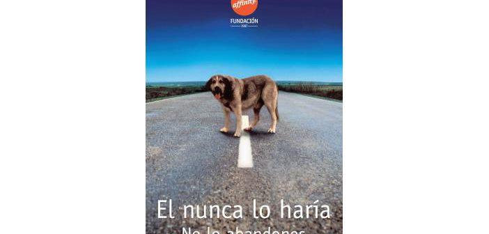Más de 137.000 mascotas fueron recogidas en 2015
