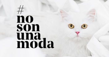 #NoSonUnaModa