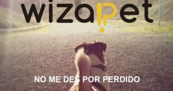 Wizapet gestiona alertas de mascotas extraviadas