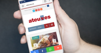 Cinco pasos para crear la web del centro veterinario