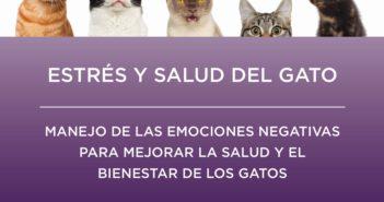 Ceva presenta la guía de la ISFM sobre estrés, bienestar y salud felina