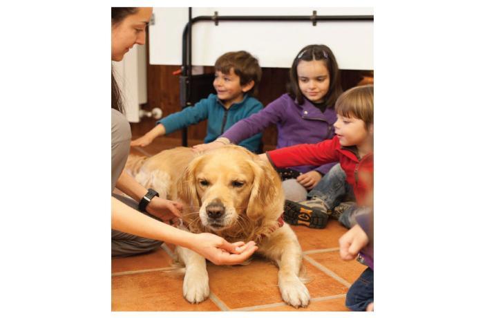 Técnico en intervenciones asistidas con animales