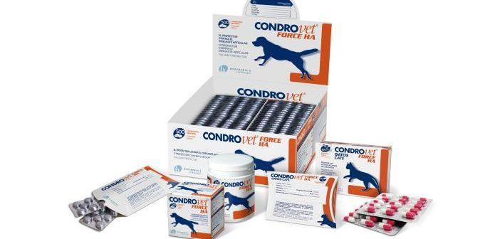 Bioibérica presenta Condrovet Force HA