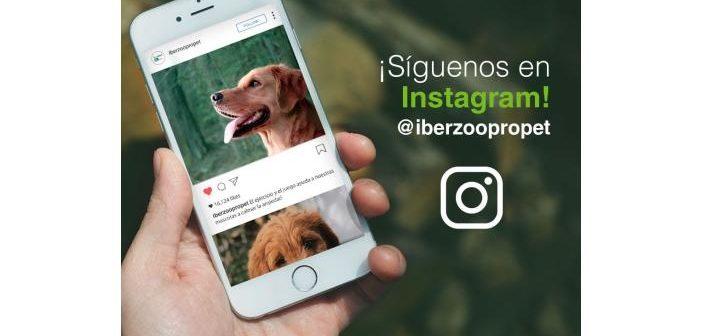 Iberzoo+Propet abre su perfil en Instagram