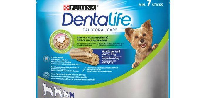 PURINA dentamini