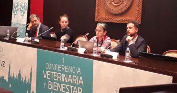 Más de 250 profesionales se reúnen Zaragoza para hablar de bienestar animal