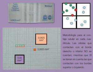 Técnicas utilizadas para el estudio hematológico