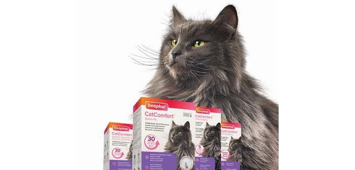 COMINTER catcomfort