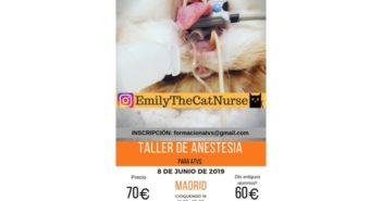 Taller de anestesia