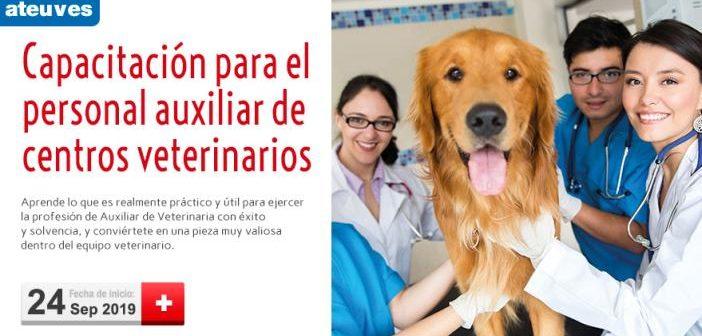 Curso de capacitación para el personal auxiliar de centros veterinarios