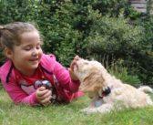 Hay que educar a los niños para no acercarse a los perros que muestran temor